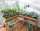木製菜園プランター ベジトラグ 使用イメージ