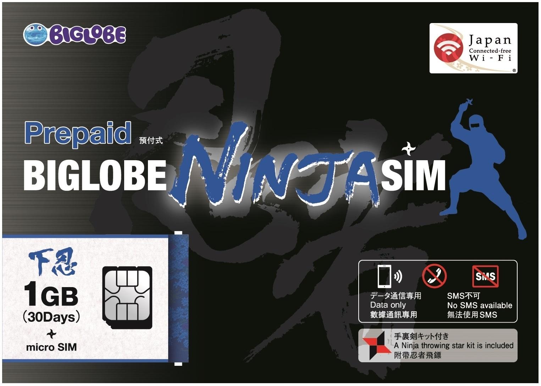 世界剣道選手権大会SIM