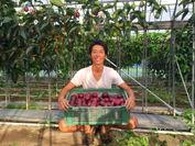 収穫したパッションフルーツと園主