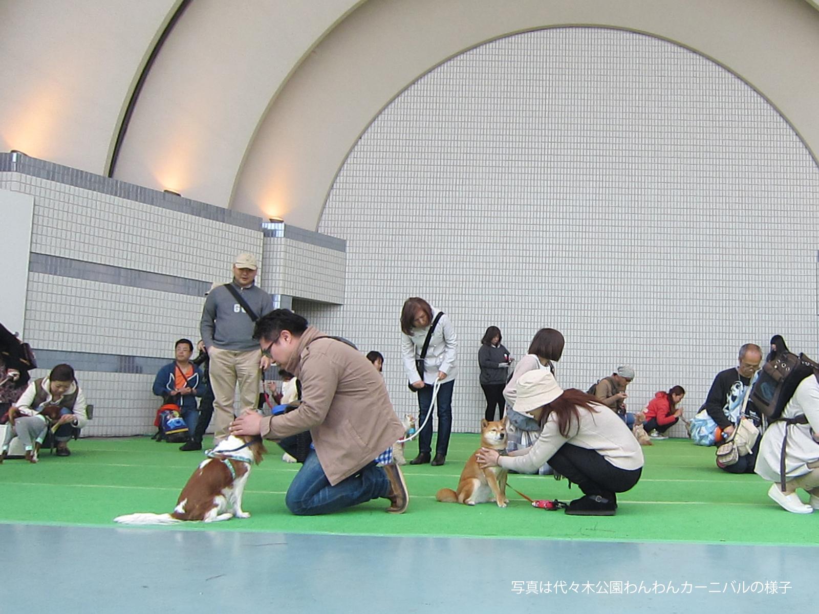 「イオンペット株式会社」3月2日(土) イオンペット  …