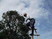植木職人イメージ2
