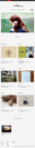 「&Premium.jp」WEBのトップ画面