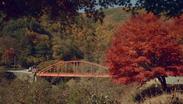 色鮮やかな秋の情景