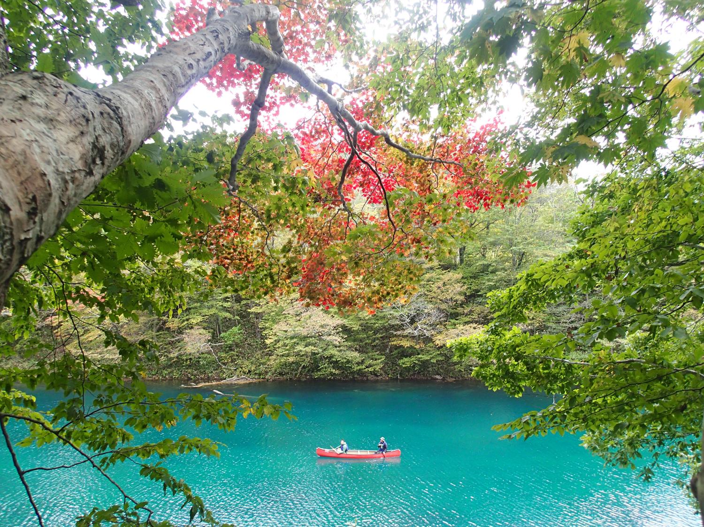 水深260mの湖の上で朝のティータイムが楽しめる「日本一の朝カヌー」8年連続水質日本一の支笏湖で実施中