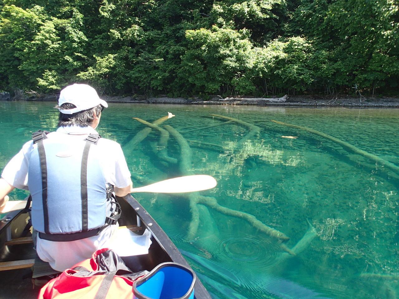 環境省認定 8年連続水質日本一