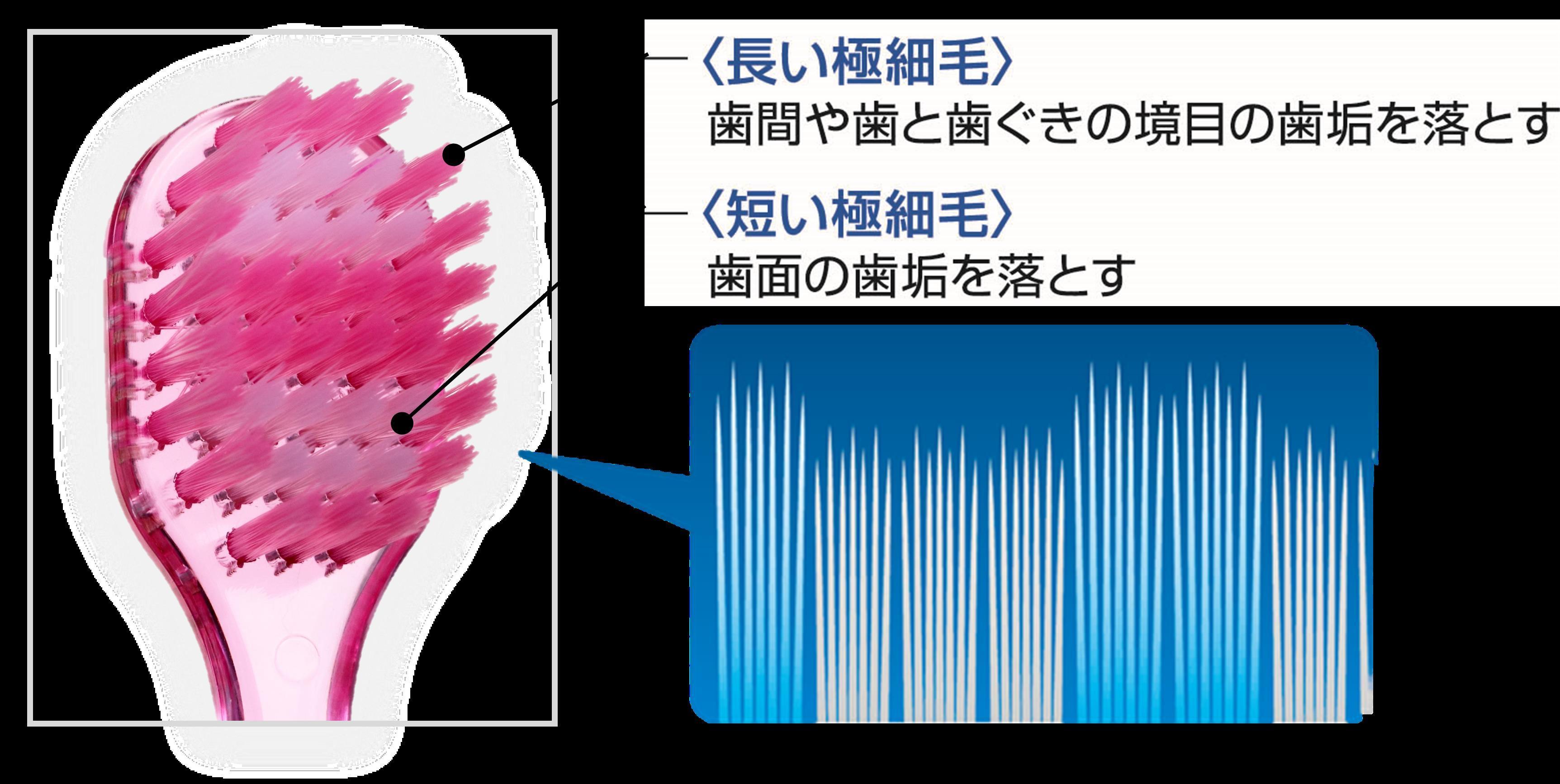 https://www.atpress.ne.jp/releases/121578/img_121578_4.jpg