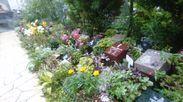 高輪庭苑1