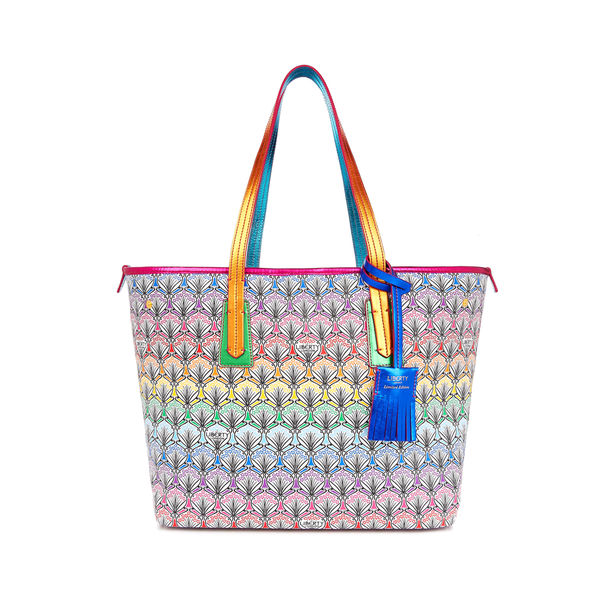 Rainbow Little Marlborough Tote Bag