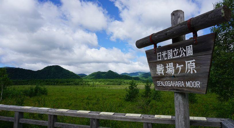 本州最大の高層湿原「尾瀬」と人気のハイクコース「戦場ヶ原」を歩くいいとこどりハイクツアー