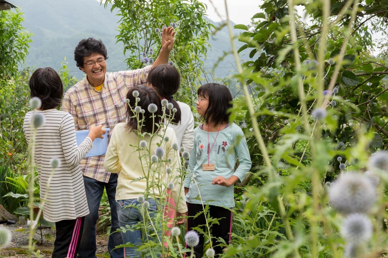 絶滅危惧種の花「ヒゴタイ」で一足先に秋の花を楽しむお花見会を8月27日広島県庄原市にて開催