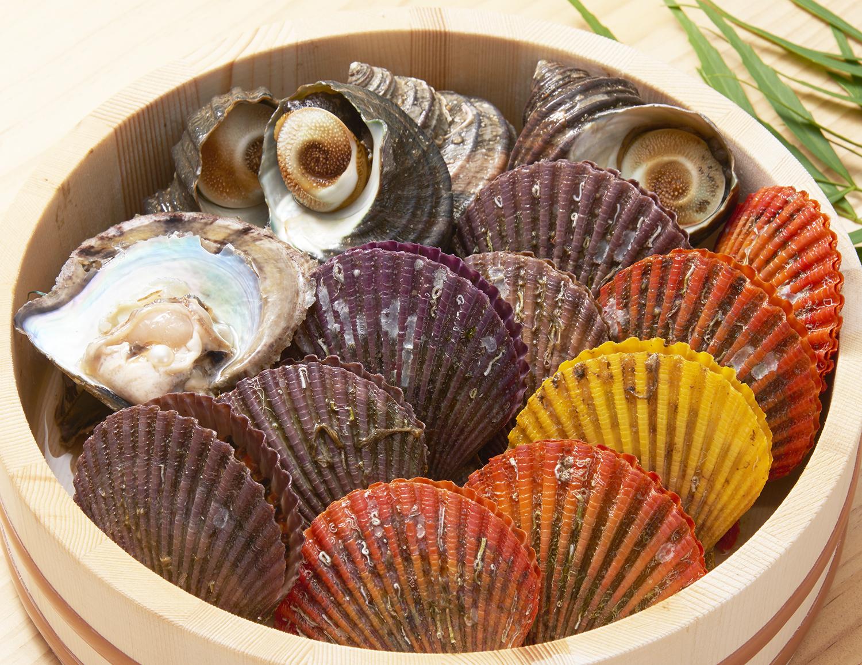 おうちで真珠探し!真珠貝、ヒオウギ貝など愛媛産の活き貝をセットにした「海のたまて箱」休暇村のQパックで2018年3月末まで販売
