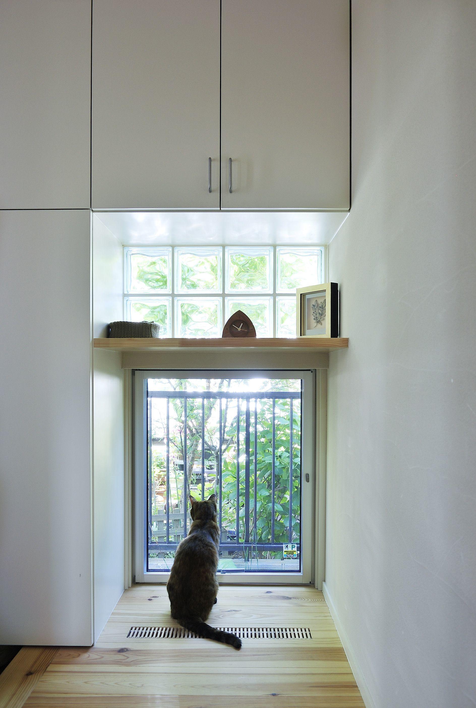 セミナー「人も猫も快適生活! 4匹のネコと気持ちよく暮らす家」