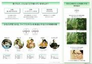 レンズ部門グランプリ受賞商品-2