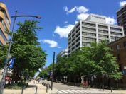 Kosha33(神奈川県住宅供給公社内)