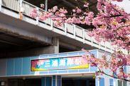 河津桜が有名な三浦海岸駅
