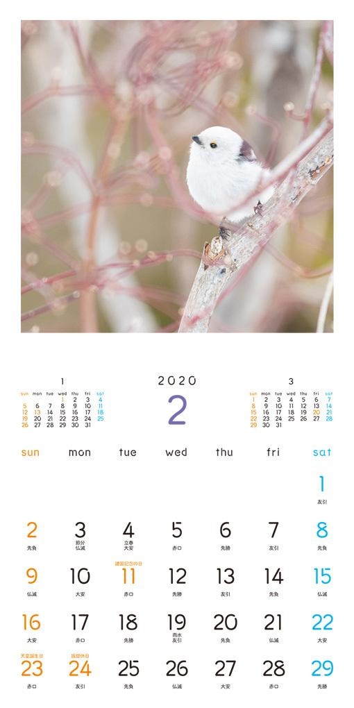 もふもふふわふわ シマエナガ カレンダー 2020(翔泳社)2月