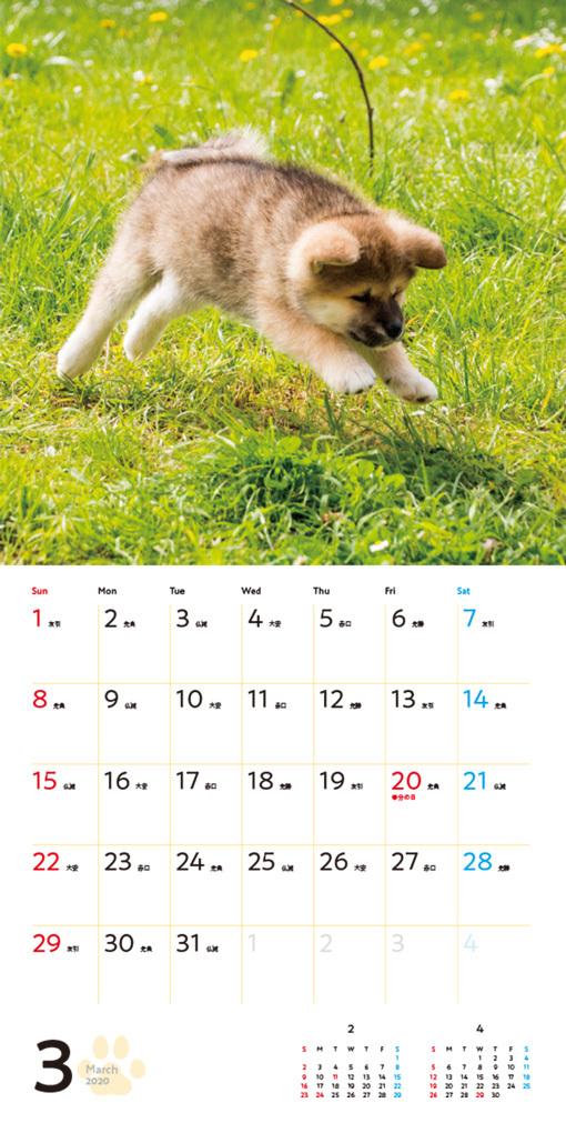 むくむくもふもふ 秋田犬 カレンダー 2020(翔泳社)3月