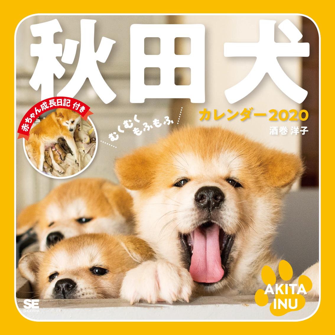 むくむくもふもふ秋田犬カレンダー2020