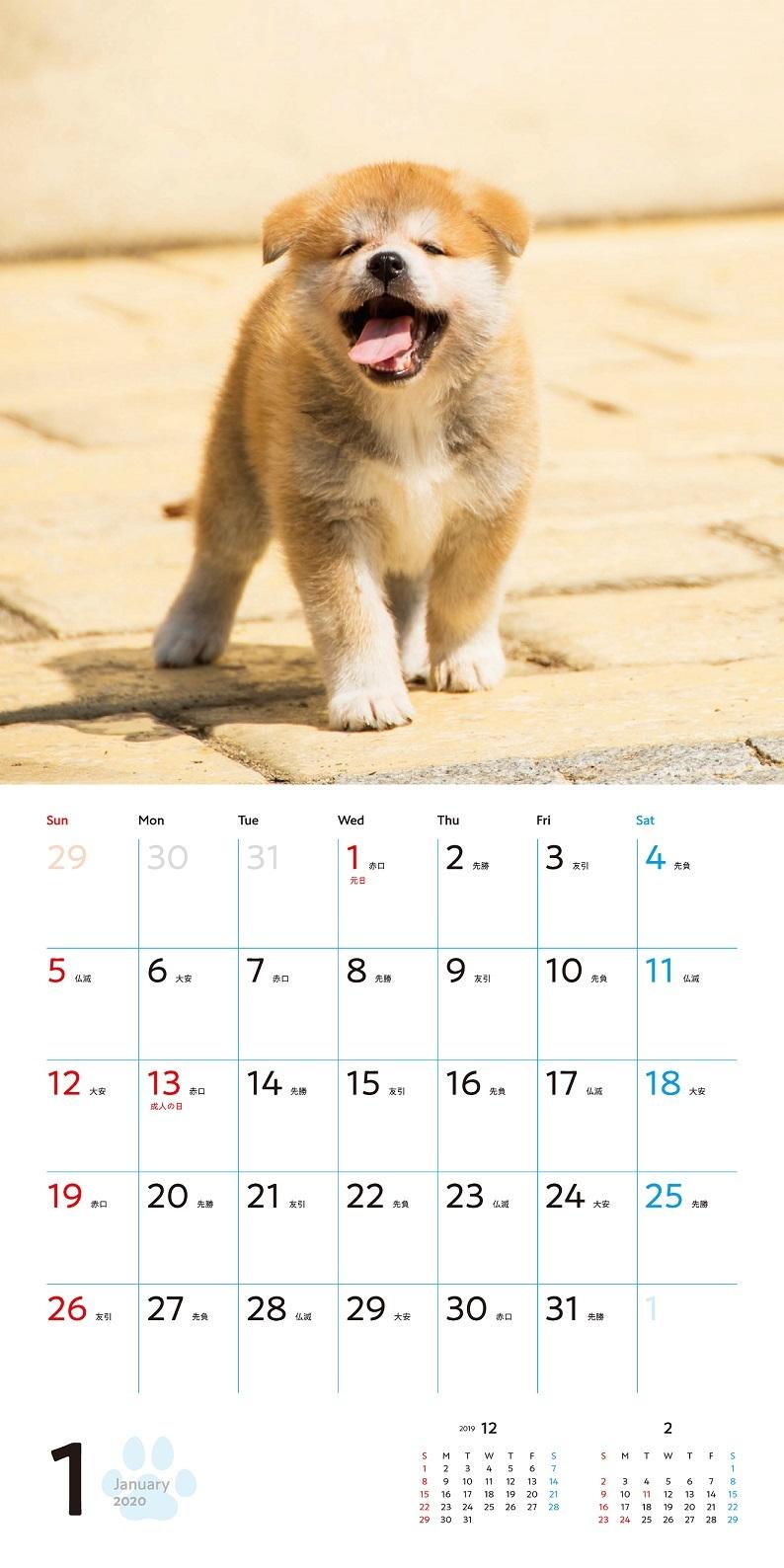 むくむくもふもふ秋田犬カレンダー2020_1月