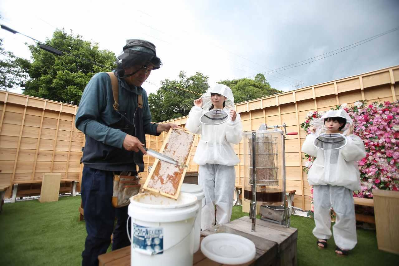 養蜂体験風景3