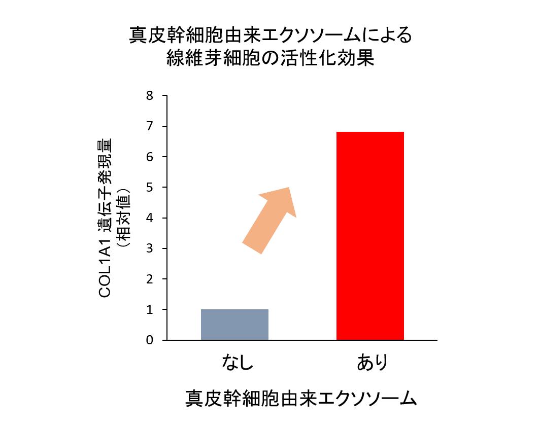 会社 日本 メナード 化粧品 株式