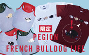 FRENCH BULLDOG LIFE×PEGION