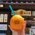 【まるごとオレンジと、緑色の生分解性ストロー】