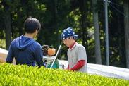 京都和束産・自家栽培茶のみ使用
