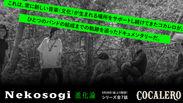 独占公開!大阪の実力派シンガーソングライター初となるバンド誕生秘話 全7話@「コカレロ」公式アカウント