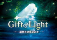 「Gift of Light」作品画像