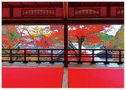上書院から眺める紅葉