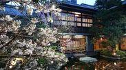 桜シーズンイメージ