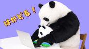日本テレビ ZIP!、『星星のベラベラENGLISH』でおなじみのパンダ「星星(セイセイ)」がPCクッションで登場!