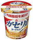 『(機能性表示食品)恵 megumi ガセリ菌SP株ヨーグルト フルーツミックス』