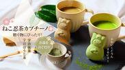 かわいいねこ忍茶がドロンと変身!