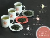 極上のティーバッグ煎茶~3品種飲み比べセット~