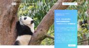 エン・ジャパン採用支援プロジェクト(WWFジャパン)