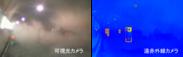 図2. 薄暗く粉じん環境下での可視光カメラと遠赤外線カメラの検出結果比較