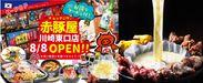 左:赤豚屋川崎店オープンのチラシ、右:人気の映える料理「UFOチキン」1人前 税込1,450円(2人前から注文可。写真は2人前)