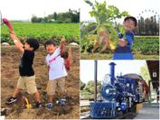 遊園地と収穫体験が1日で楽しめるむさしの村