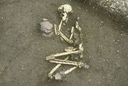 埋葬された人骨(屈葬)