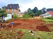 植樹地の整備風景(20年度)