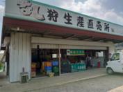 藤野果樹園さんの直売所です。元気な看板娘のお母さんが目印です。