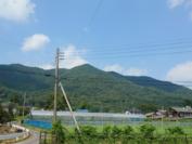 梨農園さんのある栃木県栃木市大平町の風景。自然豊かな環境です。