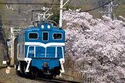 電気機関車(青・白帯) イメージ