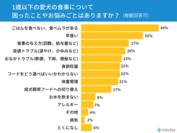 (グラフ)食事のお悩みはありますか