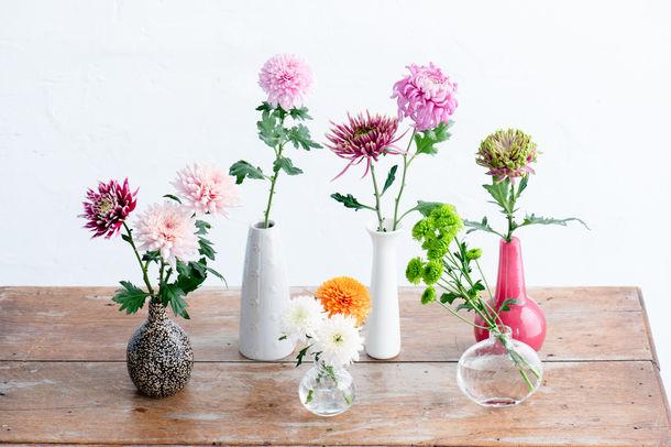 11月6日「いいマムの日」が一般社団法人日本記念日協会より正式登録 花店向けのPRロゴも制作!