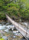 老朽化した吊橋
