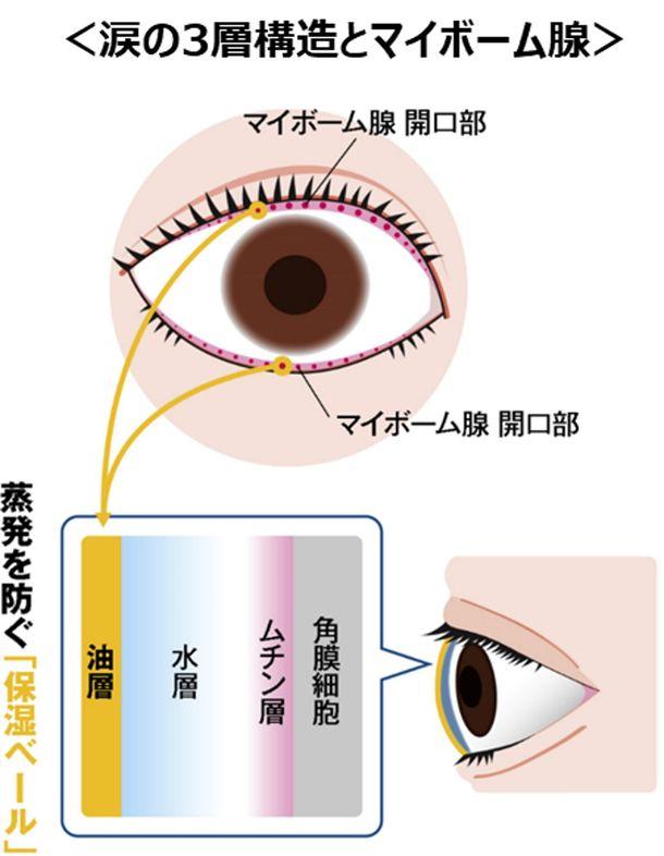 眼科医・有田玲子先生監修『涙液蒸発亢進型ドライアイリスクチェックリスト』をリリース- 瞳の保湿ベールを正常化させる5つのおすすめ習慣とは –