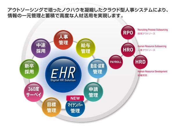 EHR全体図